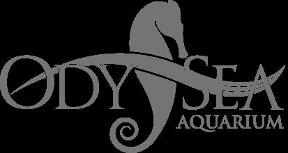 Fair Maidens & Masks Partner - OdySea Aquarium